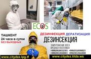 Дезинфекции в Ташкенте,  дератизация в Ташкенте,  центр дезинфекции,  цен